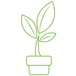 Ikona rośliny - Farba antysmogowa KNOxOUT